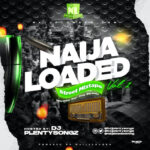 DJ PlentySongz – Naijaloaded Street Mix