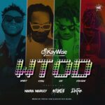 DJ Kaywise Ft. Mayorkun, Naira Marley & Zlatan – What Type Of Dance ( Instrumental )